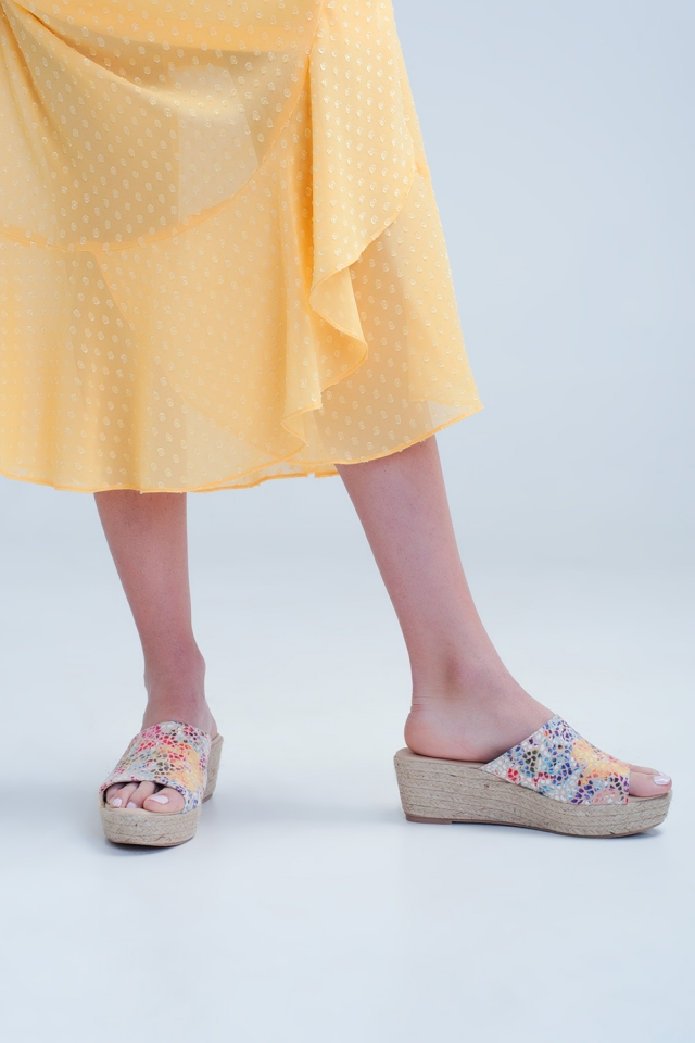 Colourful scales wedges