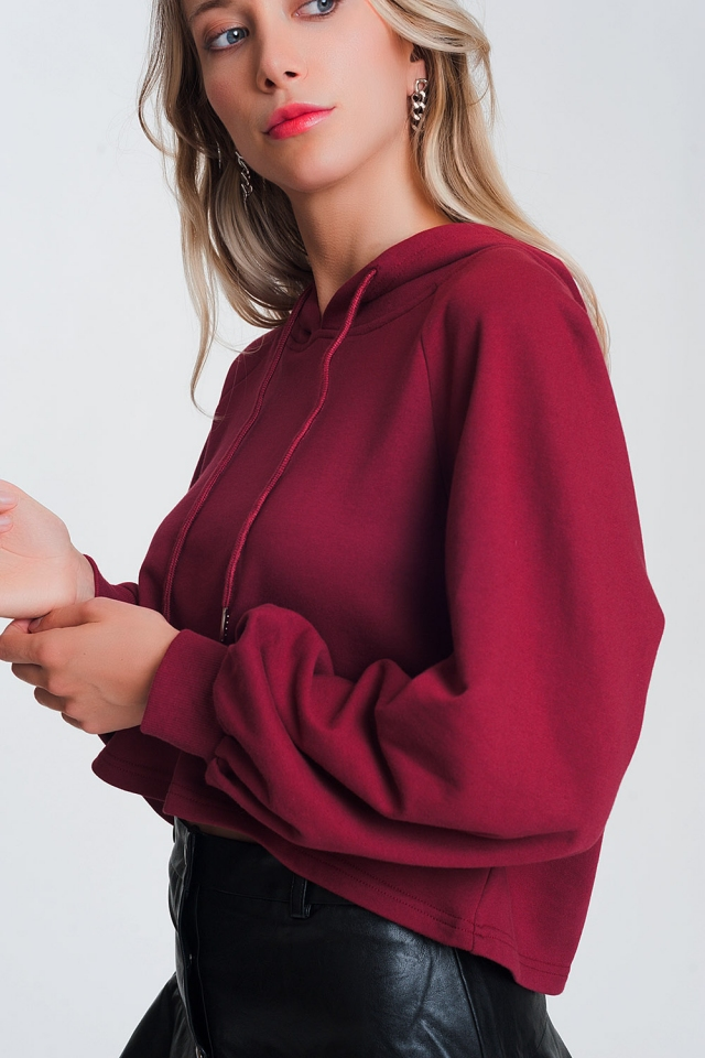 crop hoodie with v neck in maroon